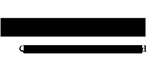 Evolv Natural Stone Logo Tag 3